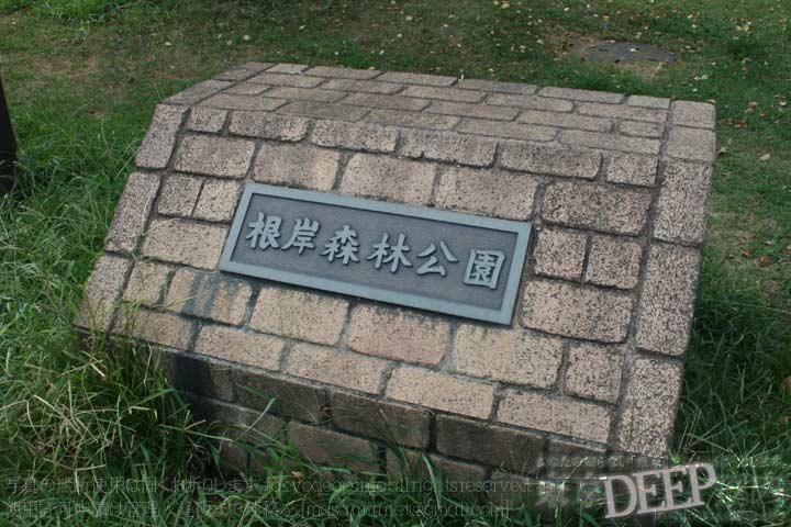 http://tokyodeep.info/img/13-433.jpg