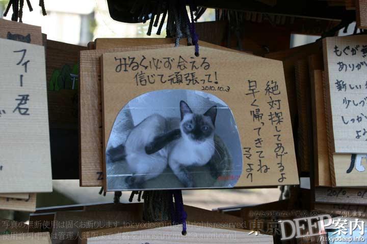 http://tokyodeep.info/img/86-112.jpg