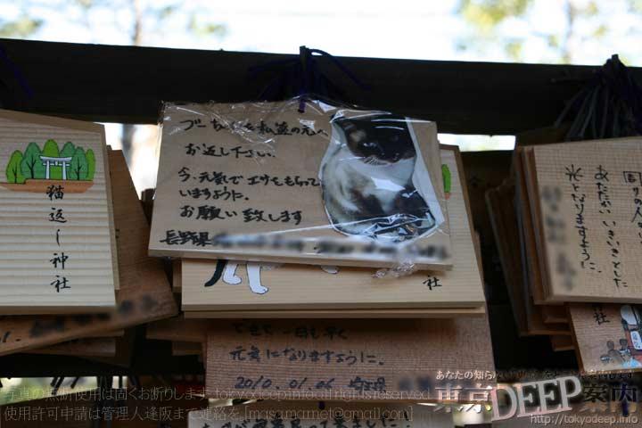 http://tokyodeep.info/img/86-113.jpg
