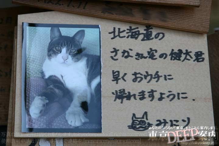http://tokyodeep.info/img/86-114.jpg