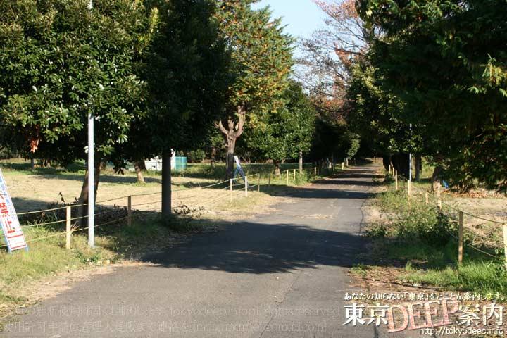 http://tokyodeep.info/img/86-129.jpg