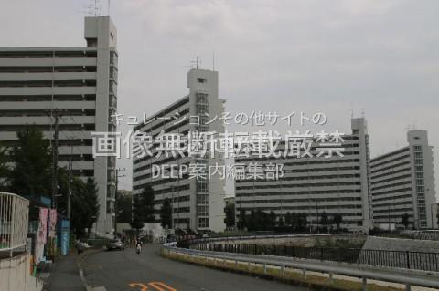 横浜市泉区 いちょう団地